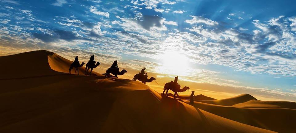 Desert tour Marrakech: Camels on dune Chegaga