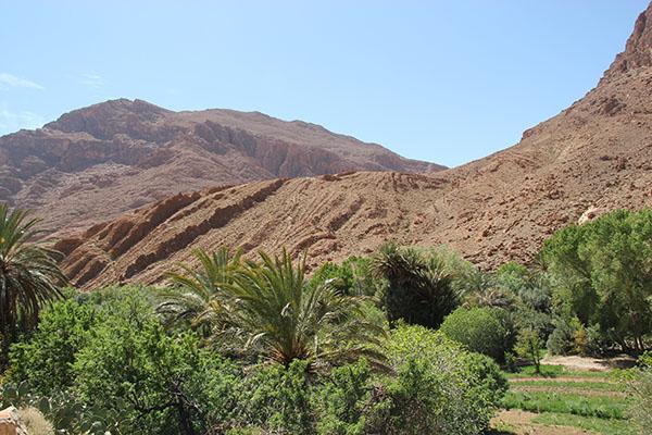 Morocco Desert Round Trip Landscape